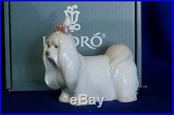 New Lladro #8368 Maltese Brand New In Box Dog Bow Cute Animal Sale Free Shipping