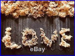 SEA MOSS WILD Harvest DR SEBI IRISH MOSS 2 Ounce HOLIDAY SALE BUY IT NOW $7.00