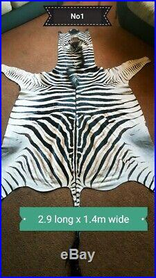 Zebra Skins Hides 30% OFF SALE A Grade PLUS Free shipping NEW Stock